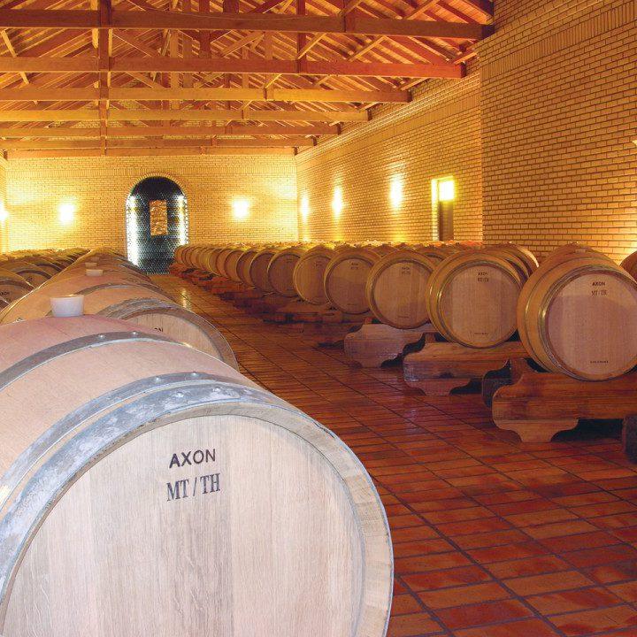 Jak specjalistyczne sklepy przechowują wina?