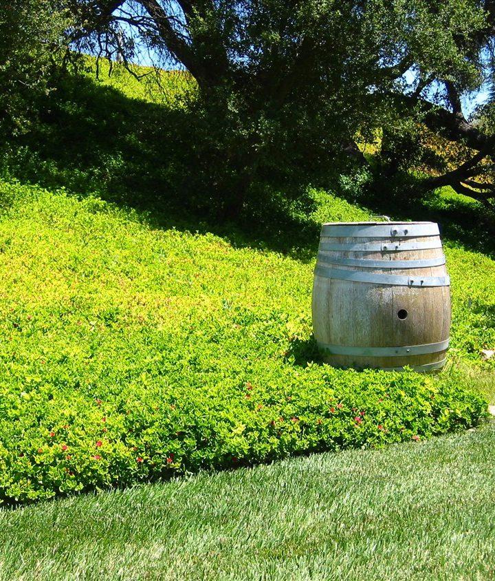 Najwięksi producenci wina na świecie