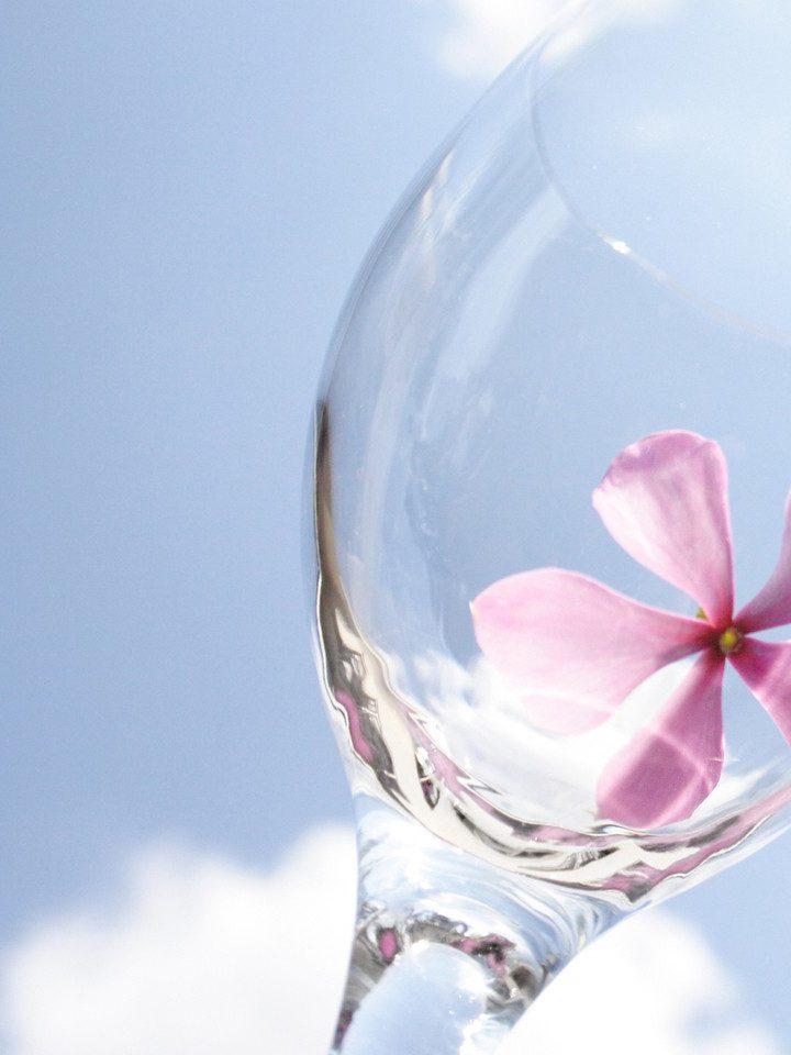 Rola drożdży podczas otrzymywania wina